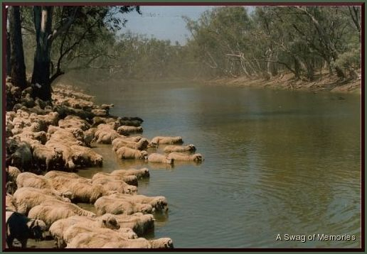Pelican Waterholes: The huge billabong adjacent to the dry Barcoo in Western Queensland