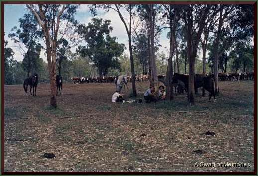droving camps-1
